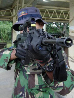 kopaska-new_rifle.jpg