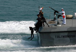 kopaska_jumpfromboat1.jpg